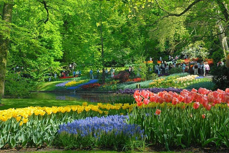 荷蘭庫肯霍夫公園
