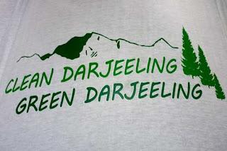 Clean Darjeeling Green Darjeeling