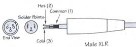 male XLR