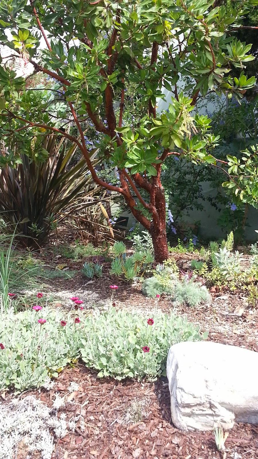 mar vista green garden showcase 3482 beethoven street cluster 4a
