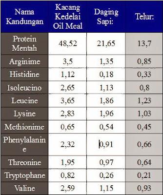 Fungsi Protein Untuk Pertumbuhan Metabolisme Tubuh