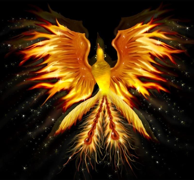 featheredlotus phoenix alive