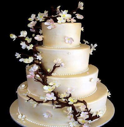 An all bright Wedding Cake is stylish and amazing even if the rest of the