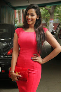 Actress Sanjana Singh  Pictures in Short Dress at Meagamann Movie Success Meet  11