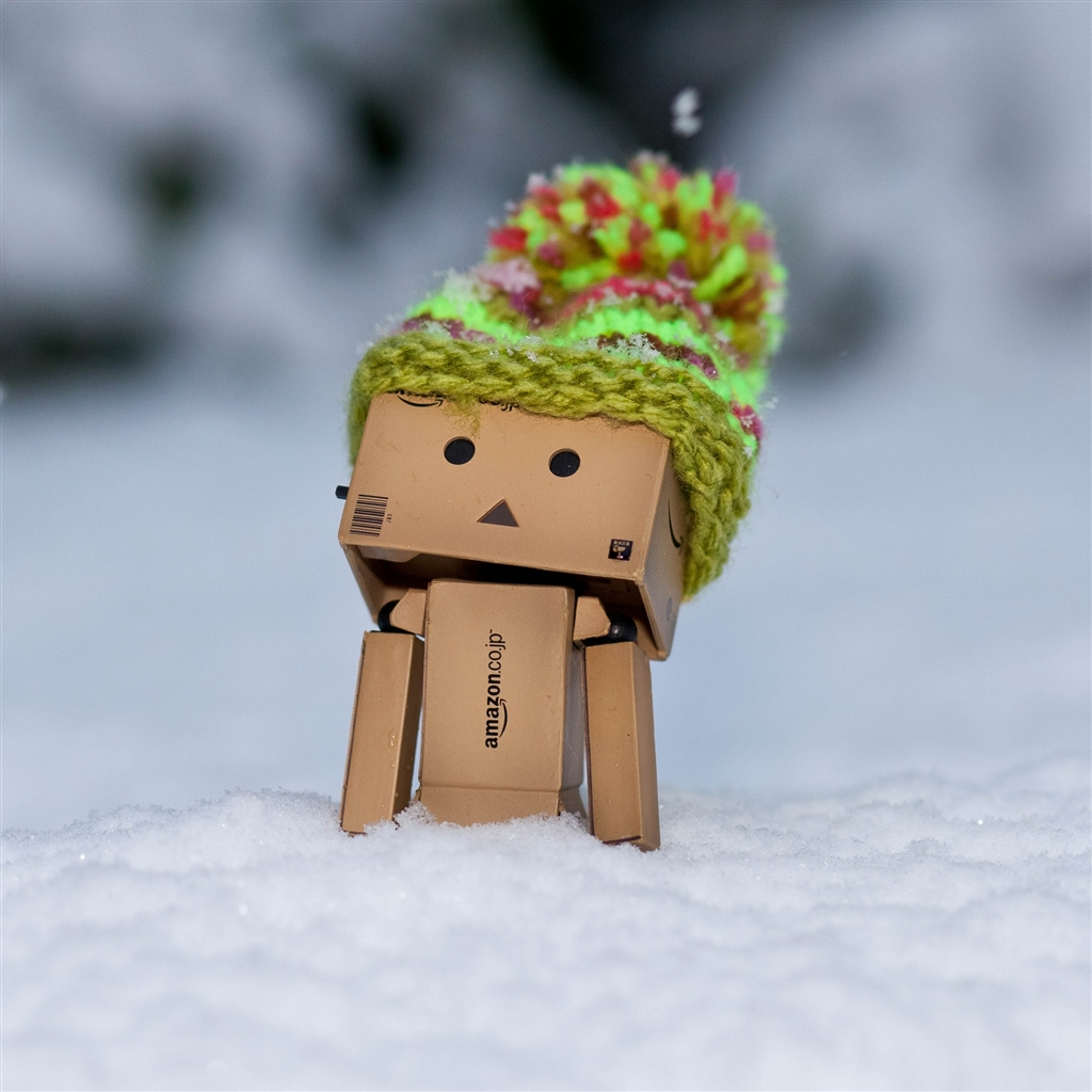iPad 4 Wallpaper - Danbo Discovering Snow - HD Wallpapers ...