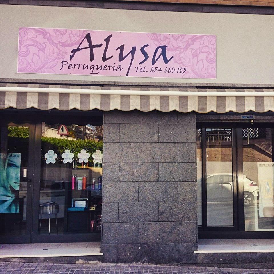 Punto de Venta  ALYSA