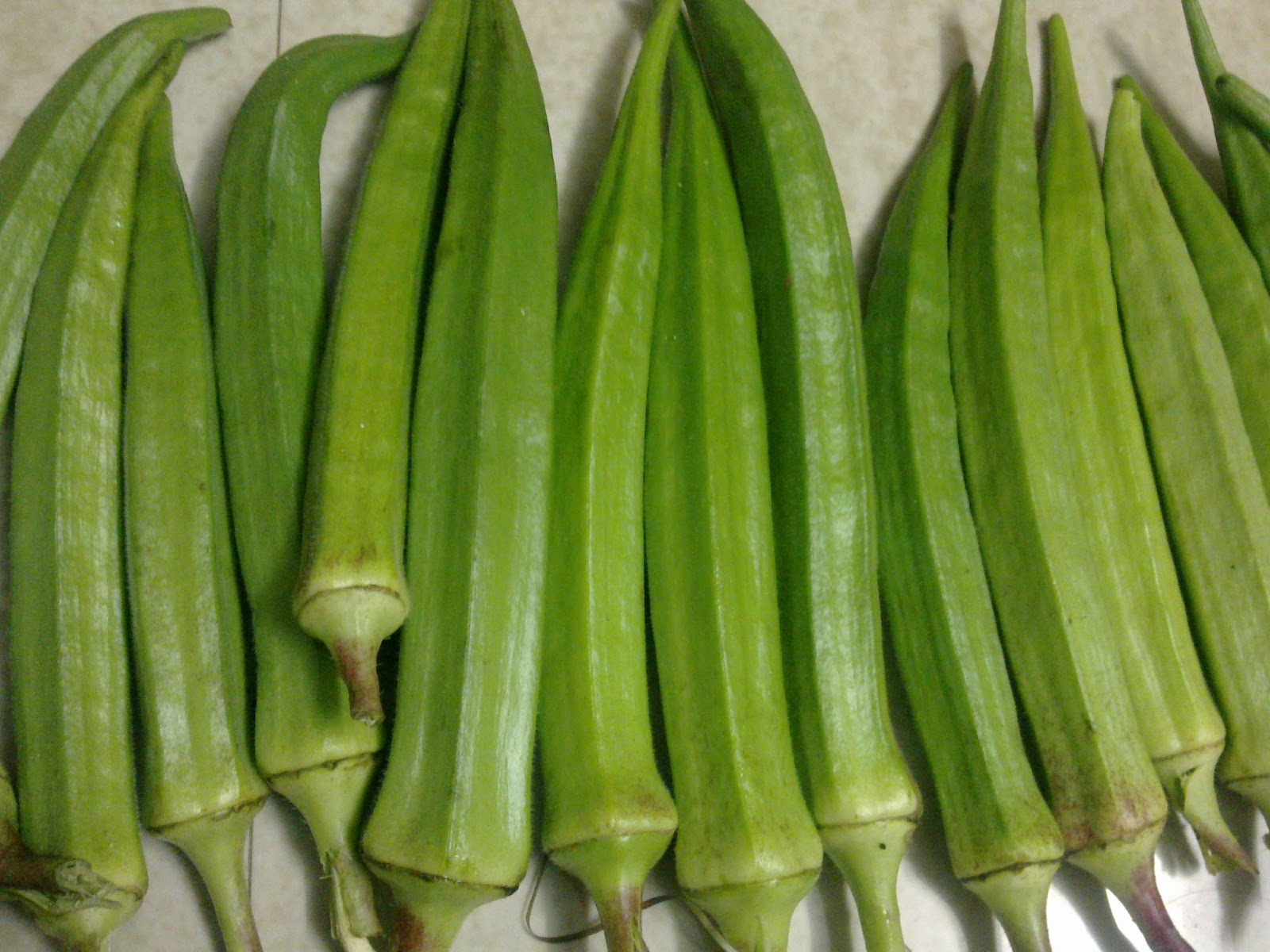 ladies finger Find here details of companies selling lady finger, for your purchase requirements get latest info on lady finger, fresh lady finger, okra, suppliers, manufacturers.