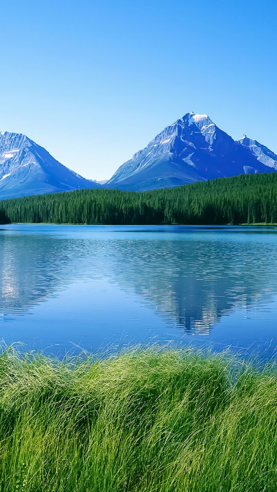 Blue Lake Mountains Green Grass  Galaxy Note HD Wallpaper