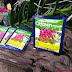 Chọn thuốc trị nấm phong lan hiệu quả