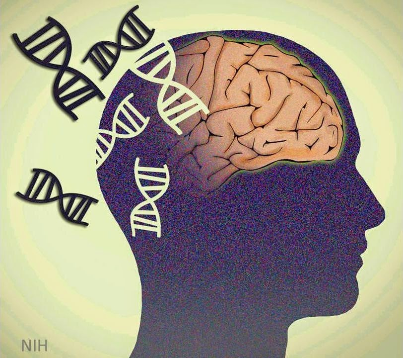 http://directorsblog.nih.gov/2014/01/28/exploring-the-complex-genetics-of-schizophrenia/
