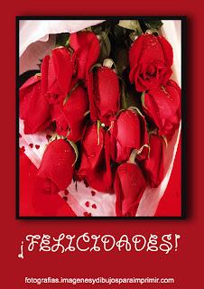 felicitar con rosas rojas Fotos de rosas rojas para facebook