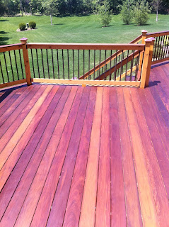 how to clean mold from trex decking