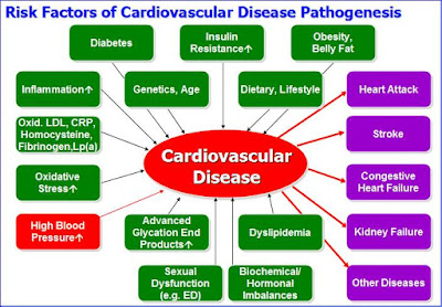 Cardiovascular Disease Risk Factors (incl. High Blood Pressure)