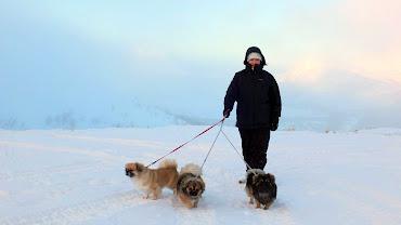 Vi er mye ute på turer, og Tromsø innbyr på mange fine turområder.