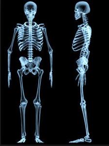 Obat untuk Pertumbuhan Tulang Alami
