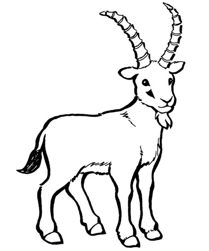 g for goat coloring pages - photo #46