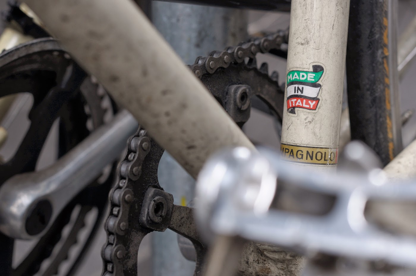 Tim macauley, the biketorialist, biketorialist, Gianni motta, conversion, single speed, custom, Melbourne, Australia, the light monkey collective, frame, Columbus, campagnolo, decals, sticker, logo, made in italy