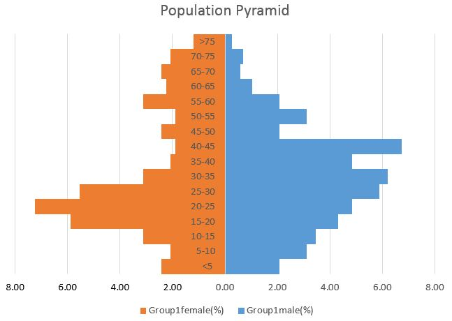 Advanced Graphs Using Excel Creating Population Pyramid In Excel