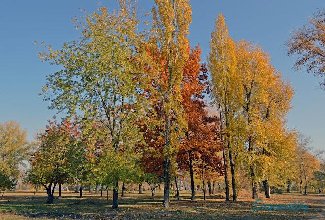 """Краски осени в парке """"Наталка"""""""