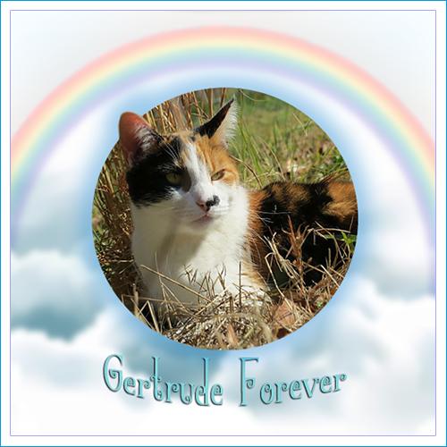 RIP GERTRUDE