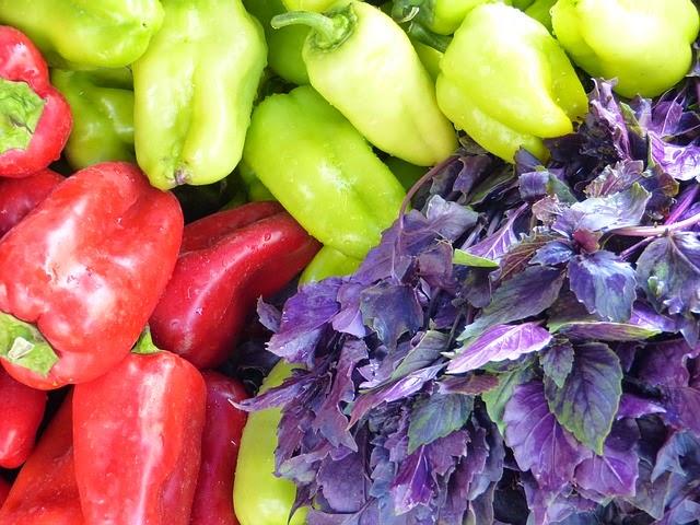 come conservare la verdura in casa