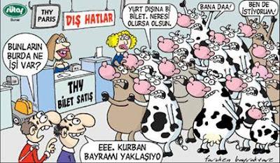 kurban-bayramında-yurtdışına-kaçan-inekler-karikatür