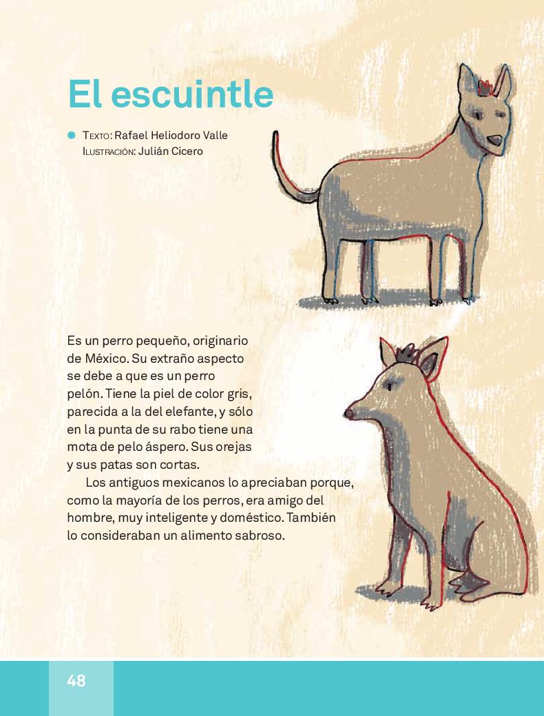 El escuintle - Español Lecturas 3ro 2014-2015