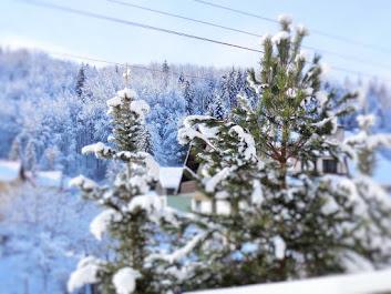 MIGAWKI Z OŚNIEŻONEJ WISŁY. Plus garść praktycznych informacji w sezonie zimowym