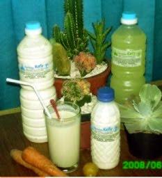 Kefir Minuman Sehat Berkhasiat Sapujagat