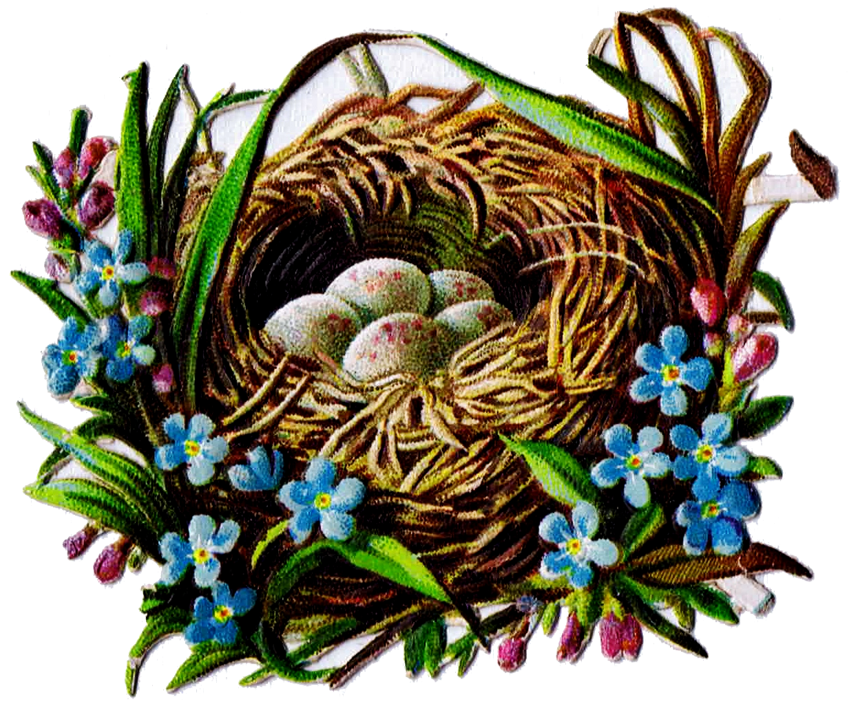 Free Printable Bird Nest Clip Art Royalty Free Antique Graphics from knickoftimeinteriors.blogspot.com