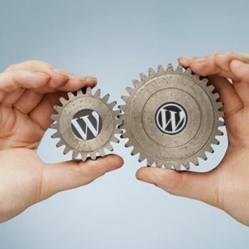 viet giao dien wordpress