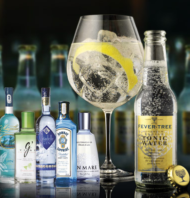 GIN TONIC FEVER-TREE