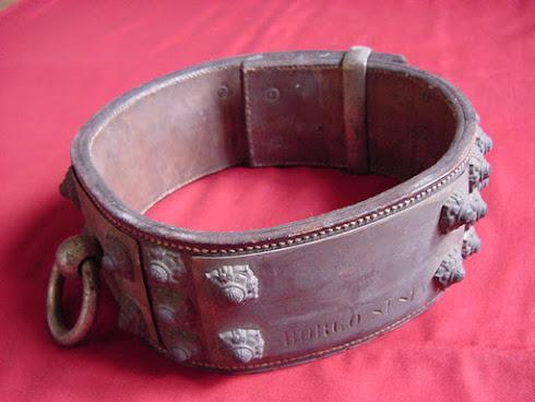 1800 s Mastiff Collar