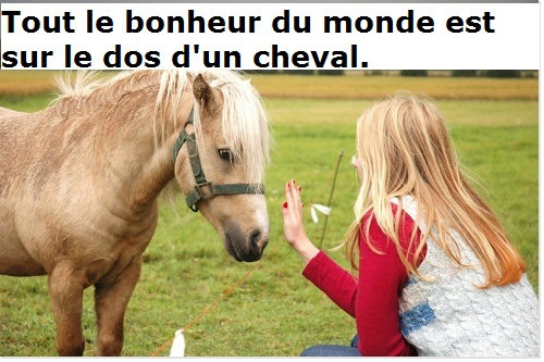 cheval arabe proverbe