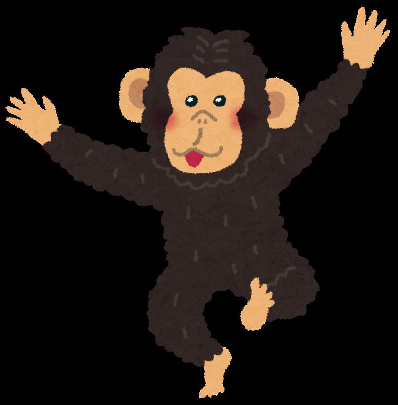 チンパンジーのイラスト ... : 絵 動物 : すべての講義