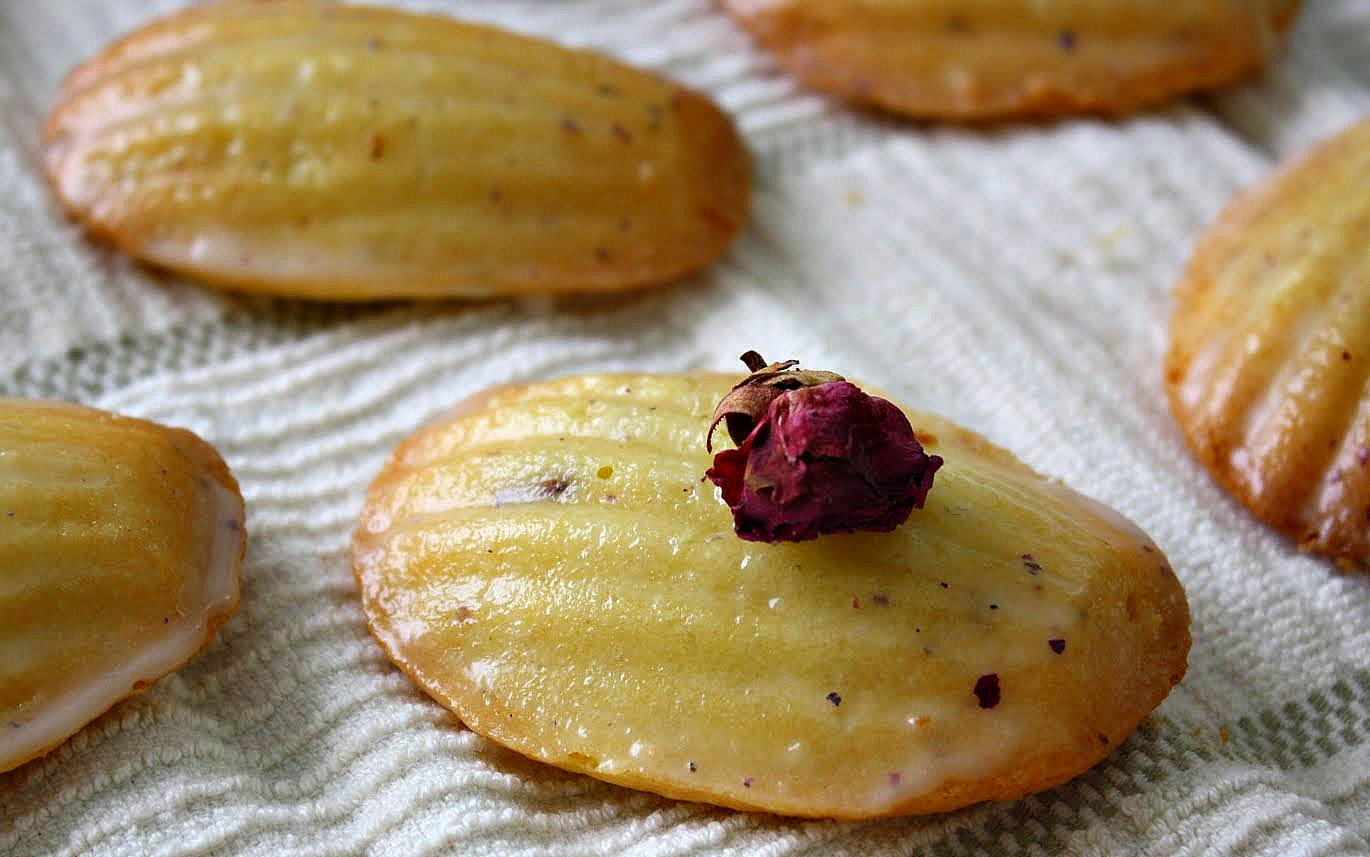 Orange-Blossom-Honey Madeleines Recipes — Dishmaps