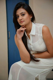 Actress Nikitha Narayan Picture Gallery in White Dress at Ladies and Gentleman Movie Press Meet 29.JPG