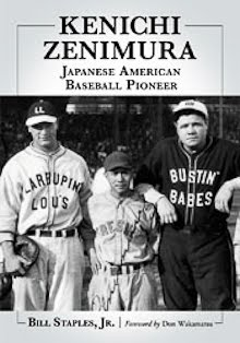 Zenimura Book Available for Pre-Sale (by Bill Staples)