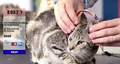 Headphone khusus kucing