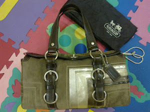 Coach Chelsea Suede Leather Satchel Bag(SOLD)