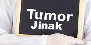 Obat Tumor Jinak Tradisional
