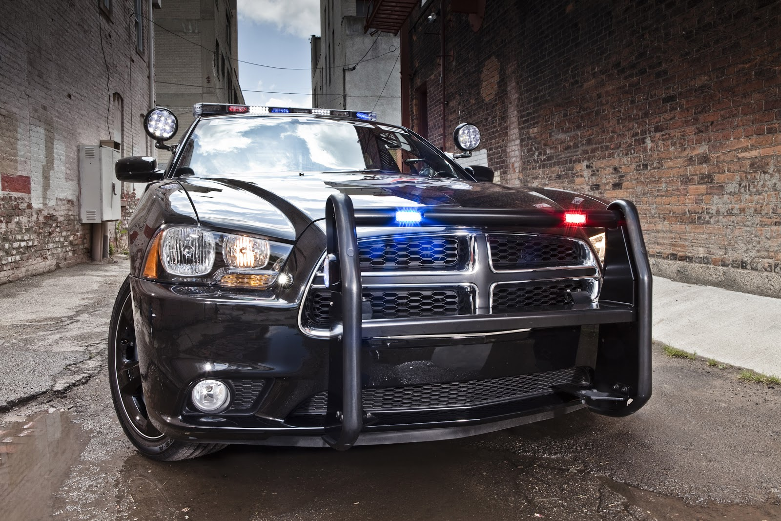 Cars Gto 2014 Dodge Charger Pursuit Awd