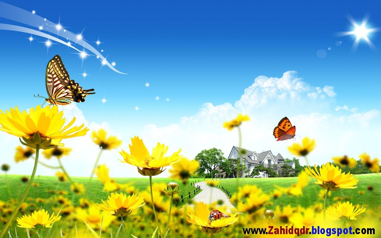 http://4.bp.blogspot.com/-OwVBU5QMb5o/UFNQFx48u2I/AAAAAAAAAMk/z4Yk3ENNCT4/s1600/HD+Flower+Wallpaper.jpg