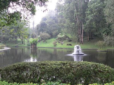 gambar taman cibodas