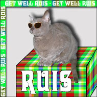 Ruis Needs Your Purrs