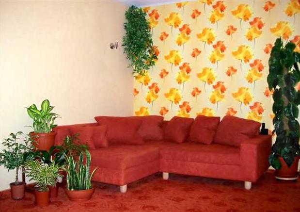 Расположение цветов в квартире