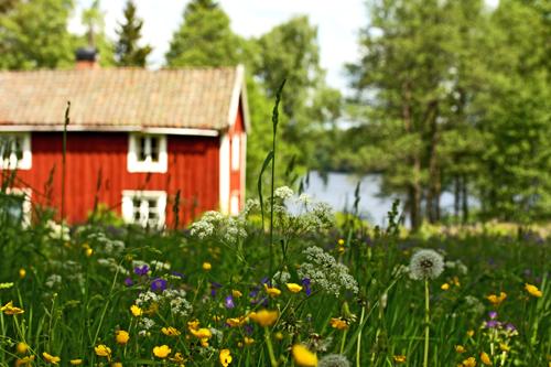 escorttjej småland svenska amatör bilder