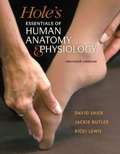 Essentials of Human Anatomy and Physiology 11th Edition by Elaine N. Marieb