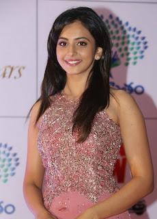 Actress Rakul Preet Singh Latest Pictures in Long Dress at Memu Saitam Dinner with Stars Red Carpet 38