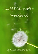 "NEW ""Wild Ally Workbook"" offer!"